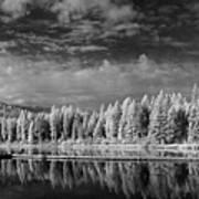 Round Lake State Park 2 Art Print