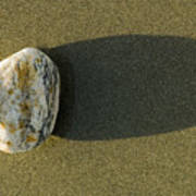 Round Rock And Shadow On Sand Dollar Art Print