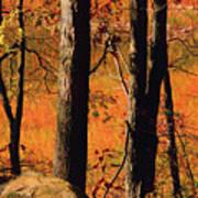 Round Valley State Park 3 Art Print