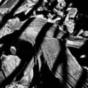 Royal Deadwood Striped Art Print