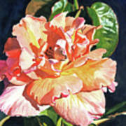 Royal Rose Art Print by David Lloyd Glover