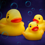 Rubber Duckies Art Print