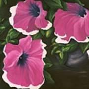 Ruffled Petunias Art Print