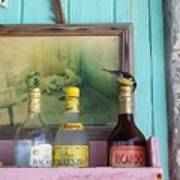 Rum Shack Bananaquit Art Print