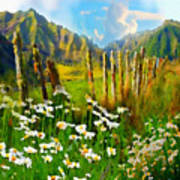 Rural New Zealand Art Print