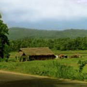 Rural Village Art Print