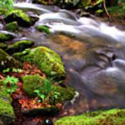 Rushing Stream Monongahela National Forest Art Print