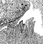 Russian Owl Art Print
