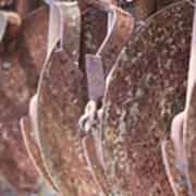 Rusted Blades Art Print