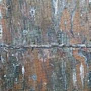 Rustic Barn Wood And Wire Art Print