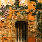 Rustic Fort Door Art Print