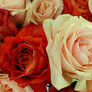 Rustic Rose Bouquet Art Print