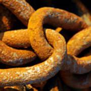 Rusty Chain Print by Carlos Caetano