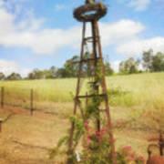 Rusty Garden Feature Art Print