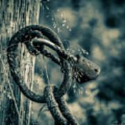Rusty Lock And Chain Art Print