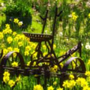 Rusty Plow In Daffodils  Art Print