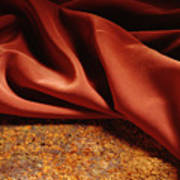 Rusty Silk Art Print