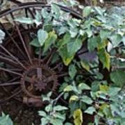 Rusty Wheel Art Print