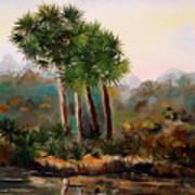 Sabal Palmettos Art Print