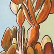 Sabar Cactus Art Print