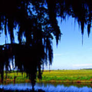 Sabine National Wildlife Refuge Art Print