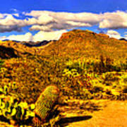 Sabino Canyon Panorama No. 1 Art Print