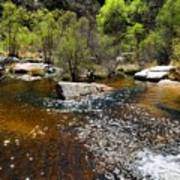 Sabino Creek Art Print