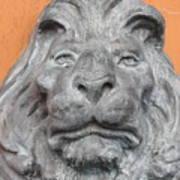 Sad Lion Art Print