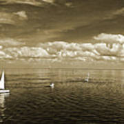 Sail Boats 1 Art Print
