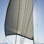 Sail In The Wind. Art Print
