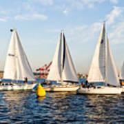 Sail Race Art Print