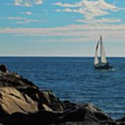 Sail View Art Print