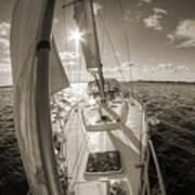 Sailboat Sailing Charleston South Carolina Art Print