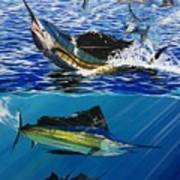 Sailfish In Costa Rica Art Print