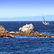 Sailing Monterey Bay Art Print