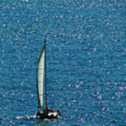 Sailing Solo Art Print
