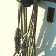 Sailor's Knot Art Print