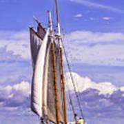 Sailor's Serenity Art Print