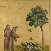 Saint Francis Of Assisi Preaching To The Birds Art Print
