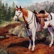 Saint Quincy Paint Horse Portrait Painting Art Print