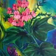 Salmon Pink Geraniums Art Print