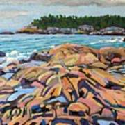 Salmon Rocks Art Print