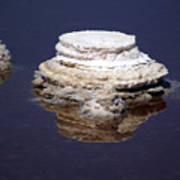 salt cristal at the Dead Sea Israel  Art Print