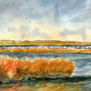 Salt Marsh And Snow Geese Art Print