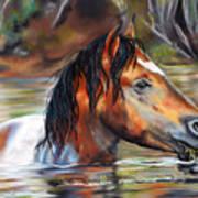 Salt River Tango Art Print
