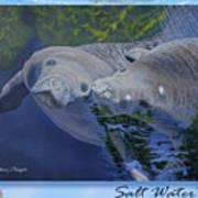Salt Water Ballet - Manatees - 2 Art Print