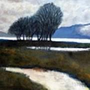 Salton Sea Trees Art Print