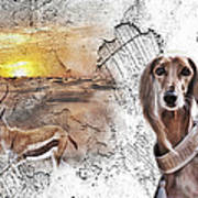 Saluki - The One And Only Art Print