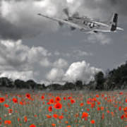 Salute To The Brave - P51 Flying Over Poppy Field Art Print