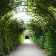 Salzburg Garden Arbor Art Print